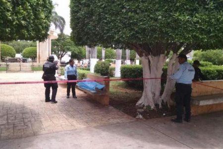 Primo del alcalde de Motul muere en la banca de un parque