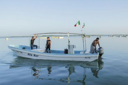 Pescadores regresan a la captura de mero ante el desánimo por el pulpo