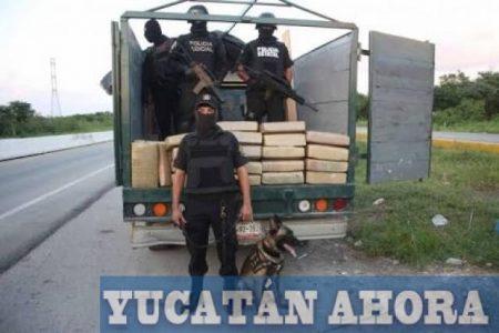 Los detienen con armas y 184 kilos de marihuana en el sur de Yucatán
