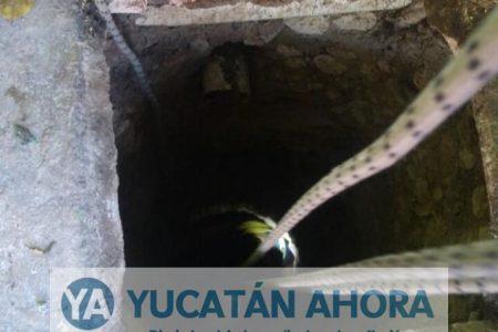 """""""Socavón"""" en el sur de Mérida, una joven cae a una fosa al romperse la tapa"""