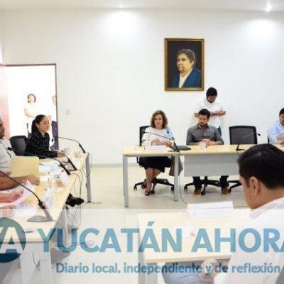 Diputados discuten modificaciones a la Ley de la Juventud