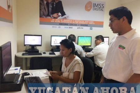 Desde una computadora con internet y puedes hacer tus trámites del IMSS