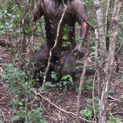 Se ahorcó en el monte, apenas ayer lo encontraron