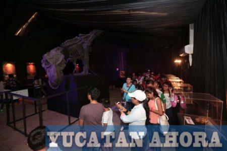 Largas filas por la exhibición gratuita de dinosaurios