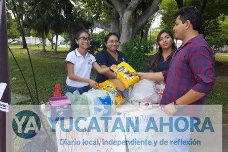 Egresados de la UADY viajan a Puebla en apoyo a damnificados del sismo