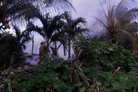 Incendio deja en la calle a una viejita de Tizimín