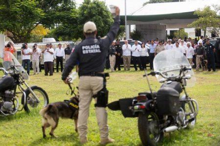 Estados Unidos envía a Yucatán oficiales caninos con zapatos y chalecos antibalas