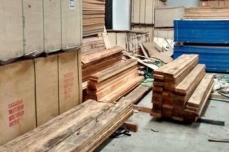 Acumulan madera de Pino de manera ilegal