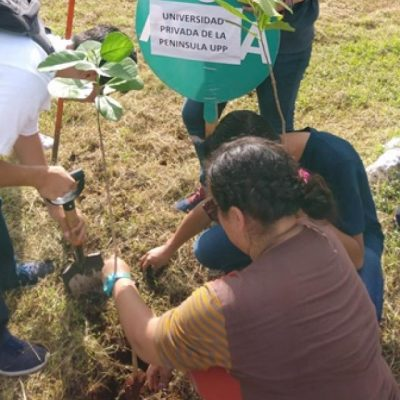 Ejército de estudiantes reforesta el Paseo Verde
