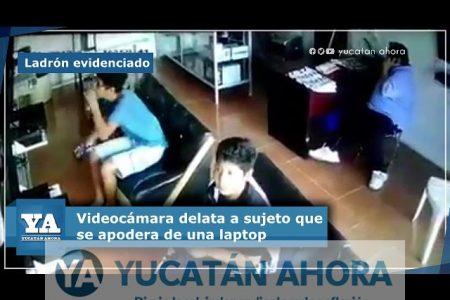Vuelven a la carga los ladrones delatados por videocámaras