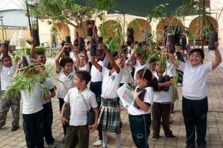 Enseñan a progreseños a limpiar zonas de manglar