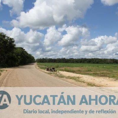 Casi 100 kilómetros de caminos saca-cosechas en Tekax