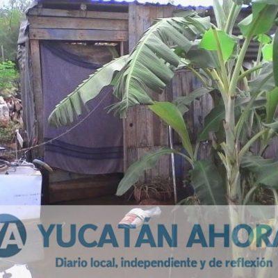 Se inundan predios y avenidas tras intensa lluvia en el sur de Mérida