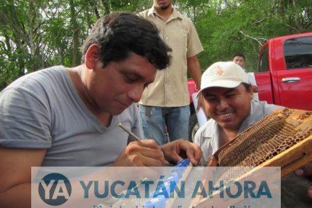 Inaceptable que haya conjuntivitis en la Península de Yucatán