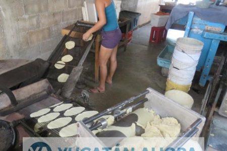 Molineros se compromenten a no subir el precio de la tortilla