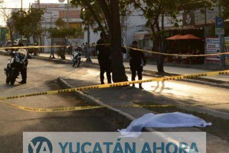 Chofer de la Alianza paga 900 mil pesos por niña atropellada