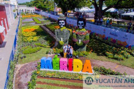 Camino de flores para el Encuentro con las ánimas en Mérida