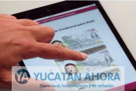 Candidatos independientes de Yucatán tendrán aplicación móvil para firmas