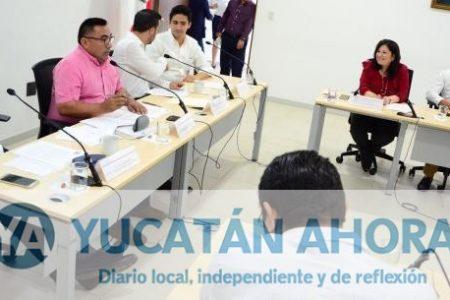 Diputados analizan reformas a la Ley para los Derechos de los Mayas