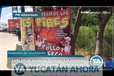 Anticipan la venta de pib en Francisco de Montejo