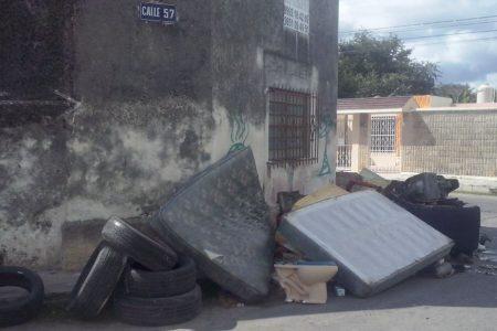 Resurge el dengue en Yucatán; llegó de Quintana Roo