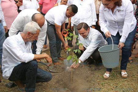 Rodríguez Asaf siembra para 'cosechar' en todo Yucatán