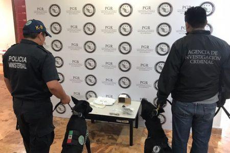 Investiga PGR sobre droga enviada por empresa de paquetería y mensajería