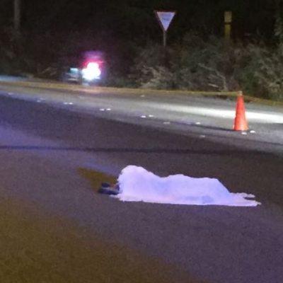 Desconocido muere atropellado en la carretera Mérida – Umán