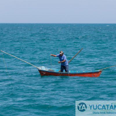 En 2050 el mar sería un 'desierto' ante la sobrepesca