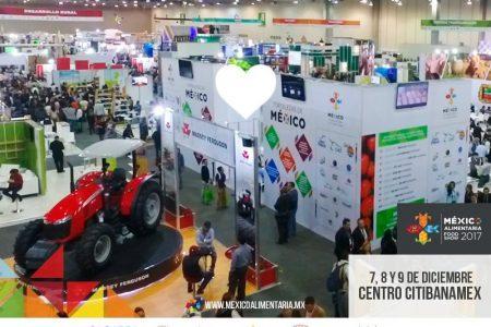 Yucatecos ofertarán al mundo carne de conejo y nuez de la India