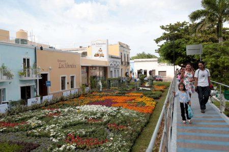 Concurrida asistencia al camino de flores 'Encuentro con las Ánimas'