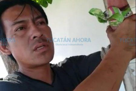 Herrero meridano se rebana un brazo con un rehilete