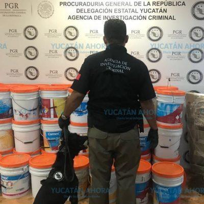 Decomisan media tonelada de marihuana transportada en cubetas de pintura