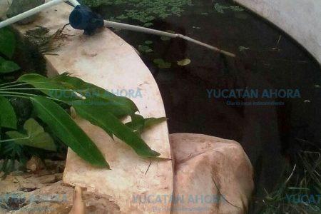 Descarga eléctrica mata a investigador de Yucatán