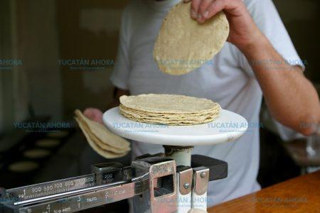 No hay motivo para subir el precio de la tortilla en Yucatán