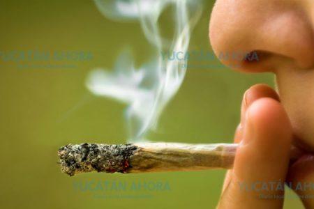 La marihuana ha rebasado el consumo de alcohol y tabaco en jóvenes