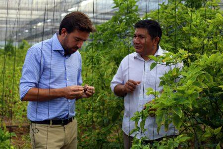 Yucatán es grande por la tenacidad de sus habitantes: Pablo Gamboa