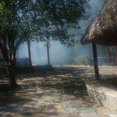 Pirotecnia quema palapas en parque ecológico de Umán