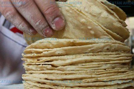 Dependiendo de las alzas en inicio de año ajustarán la tarifa de masa y tortilla
