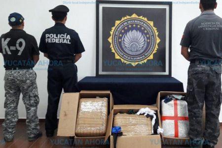 Dejan en el penal a detenido con cargamento de cocaína en la terminal de camiones