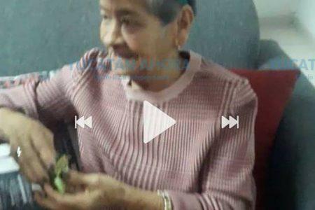 Buscan a abuelita extraviada en la zona de San Francisco Chuburná