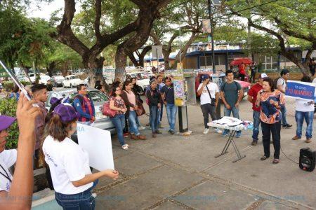 Los independientes solo le respodemos a la gente: Sofía Castro