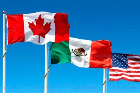 Comercio organizado de Mérida participará en la renegociación del TLC