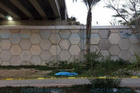 Se cayó la mujer hallada muerta en el puente de Los Héroes