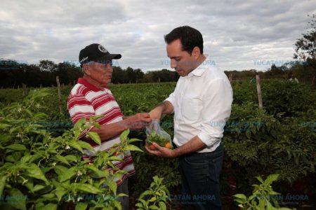 La economía de Yucatán merece más y por eso no vamos a parar: Mauricio Vila