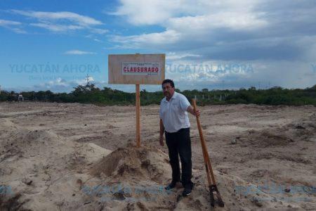 Arrasan con ecosistema costero en Chelem; les cae Profepa
