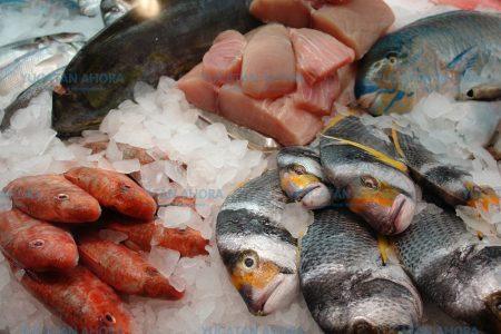 La pesca, la actividad productiva más peligrosa de Yucatán