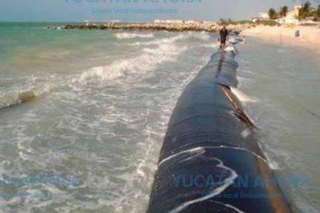 Geotubos vencen la erosión y recuperan 8 metros de playa yucateca