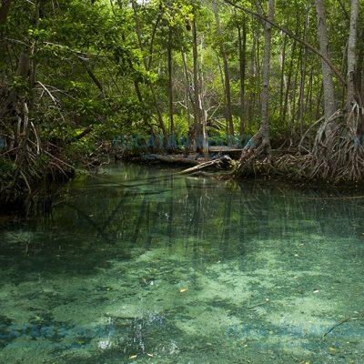 El calor es un gran aliado de los paradores turísticos de Yucatán