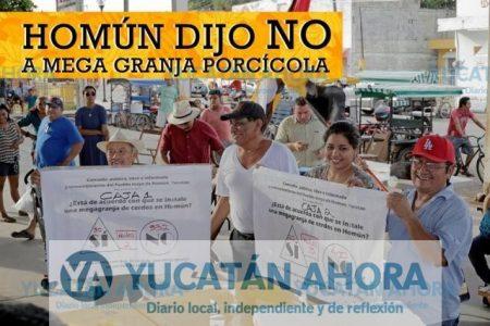 Afirman que se politiza el caso de la granja porcícola en Homún